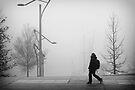 A foggy day #2 by smilyjay