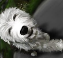 Old English Sheep Dog 2 by Sookiesooker