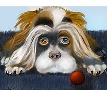 Bad Hair Day: PuffyButtons™ Puppy Alma Lee Photographic Print
