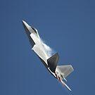 F-22A Raptor Vertical by Daniel McIntosh