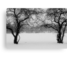 Through The Snow And To The Castle Canvas Print