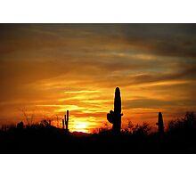 Sunset in the Sonoran Desert Photographic Print