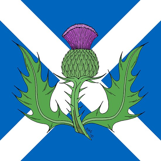 Scottish Thistle & Saltire by RHFay