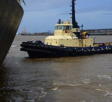 SVITZER WATO TUG, NEWCASTLE HARBOUR. by Phil Woodman