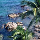 Palms & Surf by Clarkartusa
