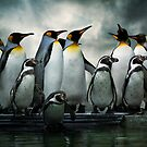 Penguins at Bourton by ajgosling