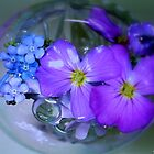 Blue Bubble! by naturelover