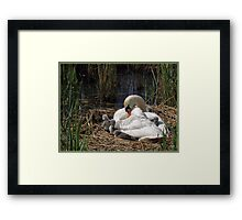 Right Time on Right Place Framed Print