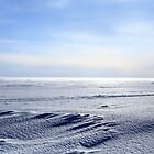 icy desert by mrivserg