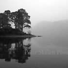 Island on Derwentwater by Peter Skillen