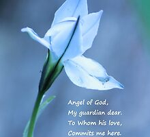 Angel by Theresa Selley