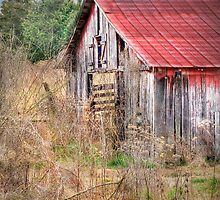 Beauty in Old Barns by LarryB007