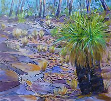 Korralbyn Grass Tree  by Virginia McGowan