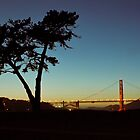 Golden Gate at Night by colecanvas