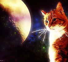 Moonlight Pondering by Kristie Theobald