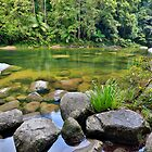 Mossman Gorge  by Peter Doré