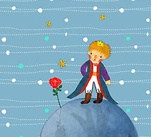 The Little Prince with Rose on the Planet B612 by scottorz