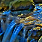 Taylor Waterfall by Clarkartusa