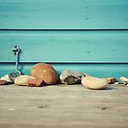 Beach Stones by Gisele  Morgan