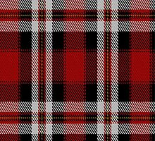 00767 Barbecue Plaid Fashion Tartan Fabric Print Iphone Case by Detnecs2013