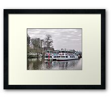 An unlikely Couple.  Framed Print