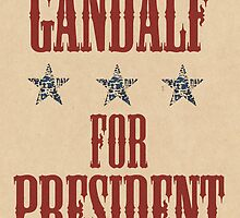 Gandalf for President by kreckmann