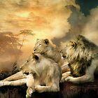 Africa - Pride by Carol  Cavalaris