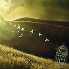 Escape by Amanda  Cass