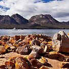 The Hazards,Tasmania by Tim Wootton