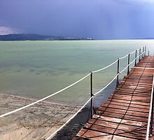 Trasimeno by Hans  Cats