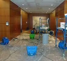 water damage repair  Westpalmbeach, by addieturner62