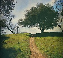 It's Time to Get Up That Hill by Laurie Search