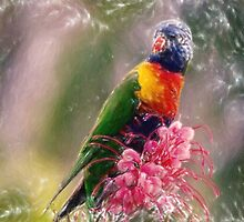 exotic bird pastel by Adam Asar