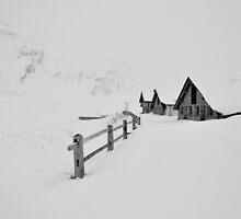 Bergalga Switzerland by itchingink