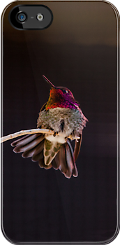 Hummingbird iPhone Case cell phone hummer by RobTravis
