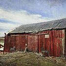 Another Red Barn by vigor
