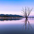 Dusk at Lake Nillahcootie by Ashpix