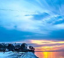 Flying North at Sunset by Mikell Herrick
