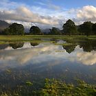 Flooded field. Lorton,Cumbria. by Peter Skillen
