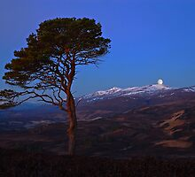 Setting moon Strathglass by Macrae images