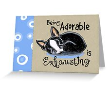 Boston Terrier Being Adorable Greeting Card