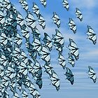Butterflies by Norma Cornes