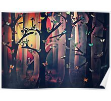 The Woods at Sunset Poster