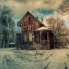 Beauty-full Winter Time by Patrycja Makowska