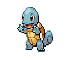 Pixel Squirtle Photographic Print