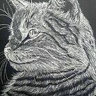 Scratch kitty by Valkinerie