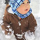 Discovering Snow by Barbara  Brown