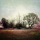 Tooting Bec Common, Wandsworth, London by Ludwig Wagner