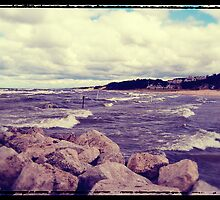 Lake Michigan Waves by perkinsdesigns