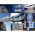 Everton - 'House of Blues' by footypix